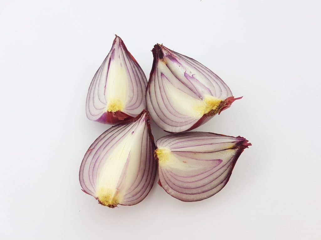 shelf life of cooked onions