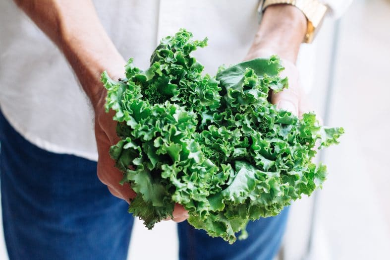 How to Store Kale?