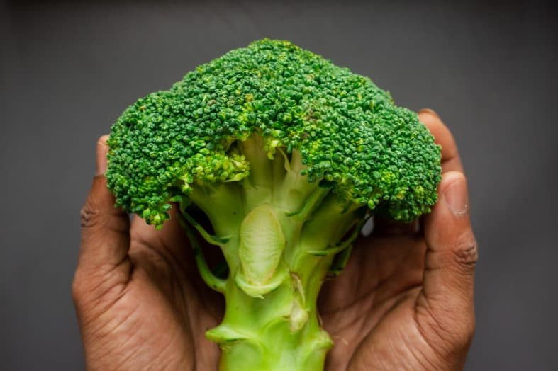 Best Way to Store Broccoli